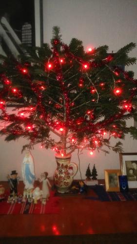 Noël, fin d'année, voeux, archives